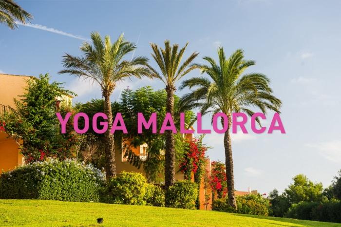 Yoga auf Mallorca: Titelbild mit Palmen